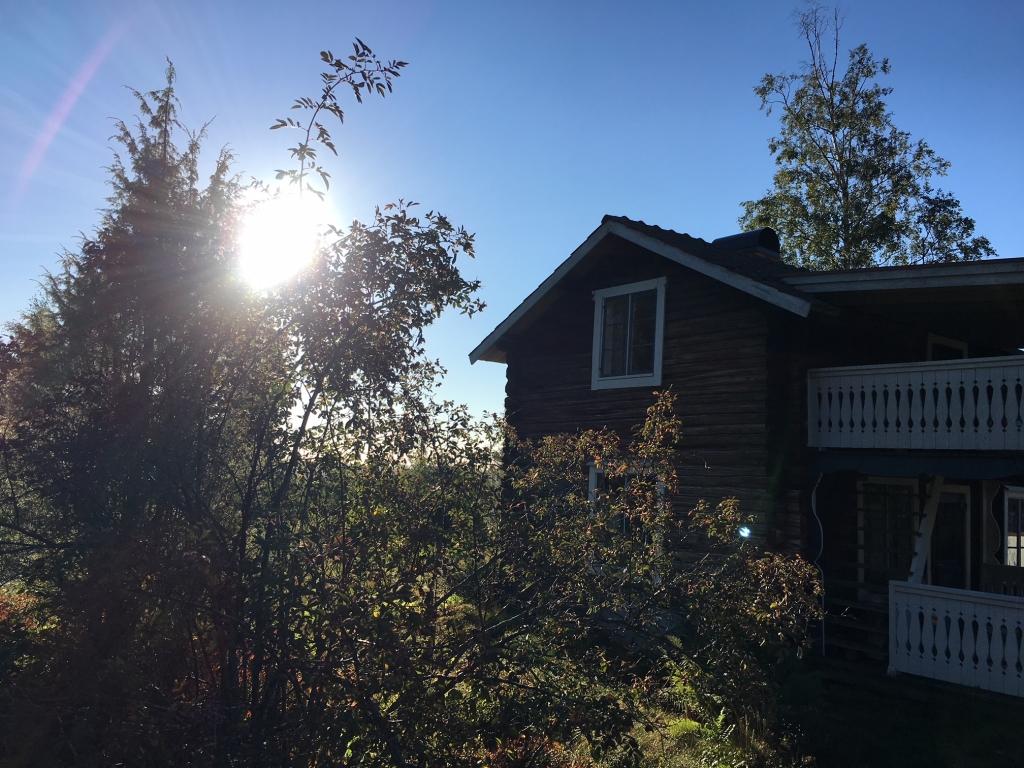 Under många många år har detta här huset stått brukat och marken runt om har fått leva sitt vilda liv.